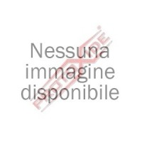 FORD FIESTA ESCORT 1600 RS 8v LNA LNB