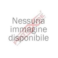 RENAULT MEGANE III 2000 16v 250HP